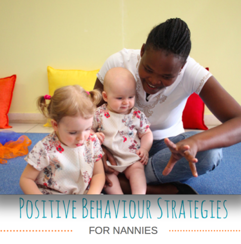 Positive Behaviour Nanny Training Course